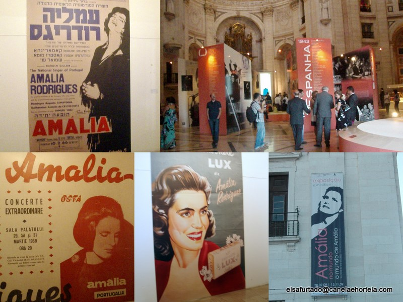 Expo Amalia2