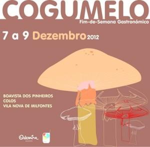 Cogumelo2