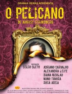 pelicano_cartaz