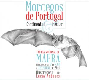 morcegos_mafra