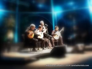 festival_artes_fado-002