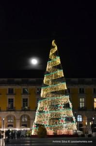 Luzes de Natal em Lisboa 2014