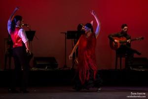 flamenco-6