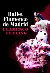 flamenco_feeling