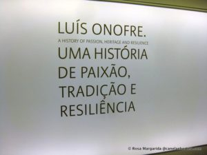 museu-calcado-005